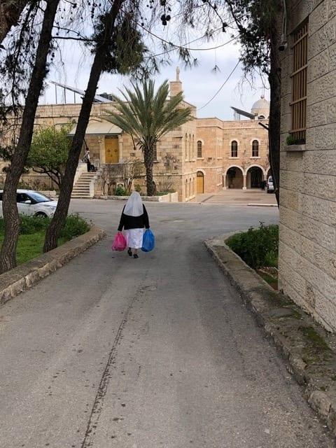 Sister carrying bags